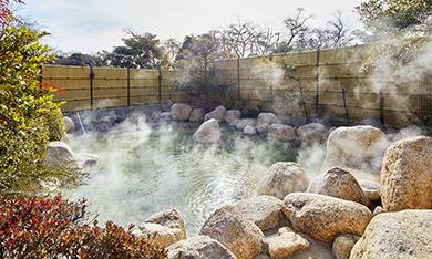 源泉かけ流し温泉(有料),湯の山温泉,三重県