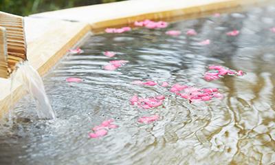 とめどなく溢れ続ける新鮮な源泉,源泉かけ流し,湯の山温泉,三重県